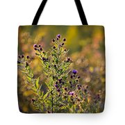 Colorful Bouquet Of Purple Aster Flowers Tote Bag by Christina Rollo