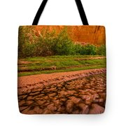 Colorful Streambed - Coyote Gulch - Utah Tote Bag by Gary Whitton