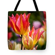 Colorful Tulips Tote Bag by Rona Black