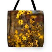 Colors Of Autumn Tote Bag by Sabrina L Ryan