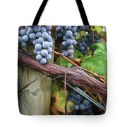 Concord Purple Tote Bag by Wendy Raatz Photography