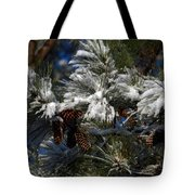 Cones Tote Bag by Skip Willits