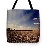 Cotton Field Tote Bag by Scott Pellegrin