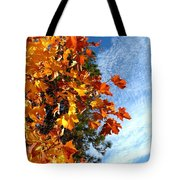Country Color 30 Tote Bag by Will Borden