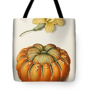 Courgette And A Pumpkin Tote Bag by Joseph Jacob Plenck
