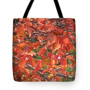 Crabapple Tote Bag by Kimberly Maxwell Grantier