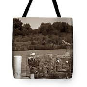 Crabbers Tote Bag by Skip Willits