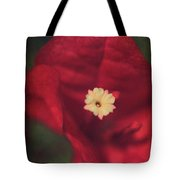 Cradle Me In Your Arms Tote Bag by Laurie Search