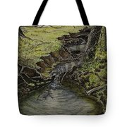 Creek  Tote Bag by Janet Felts