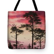 Crimson Sunset Splendor Tote Bag by James Williamson