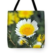 Crown daisy flower Tote Bag by George Atsametakis