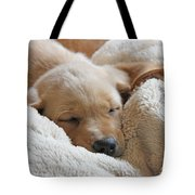 Cuddling Labrador Retriever Puppy Tote Bag by Jennie Marie Schell