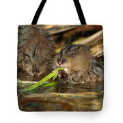 Cutest Water Rats Tote Bag by James Peterson