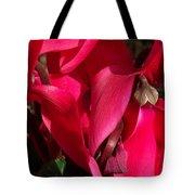 Cyclamen Tote Bag by Kathy McClure