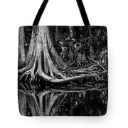 Cypress Roots - Bw Tote Bag by Christopher Holmes