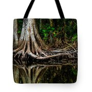 Cypress Roots Tote Bag by Christopher Holmes
