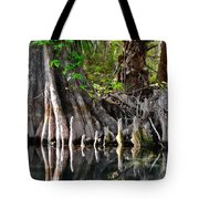 Cypress Trees - Nature's Relics Tote Bag by Christine Till