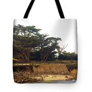 Cypress Trees On 17 Mile Drive Tote Bag by Barbara Snyder