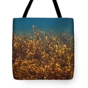 Cyril Tote Bag by Pete Marchetto