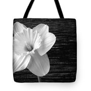 Daffodil Narcissus Flower Black And White Tote Bag by Edward Fielding