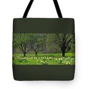 Daffodil Meadow Tote Bag by Ann Horn