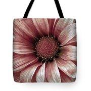Daisy Daisy Blush Pink Tote Bag by Angelina Vick