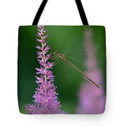 Damselfly Tote Bag by Juergen Roth