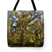 De Leon Springs - Classic Old Florida Tote Bag by Christine Till