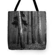 Deep Forest Tote Bag by Leland D Howard
