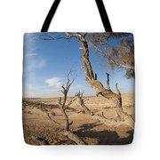 Desert Tamarix Trees Tote Bag by Dan Yeger