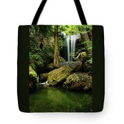 Devil Creek Falls  Tote Bag by Jeff Swan