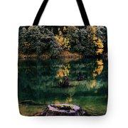 Diablo Lake Tree Stump Tote Bag by Benjamin Yeager