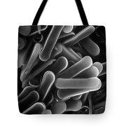 Diatom Sem 2800x Tote Bag by Albert Lleal