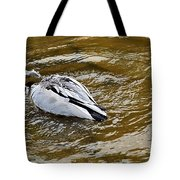 Diving Duck Tote Bag by Kaye Menner