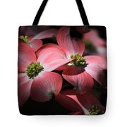 Dogwood Blossoms Tote Bag by Donna Kennedy