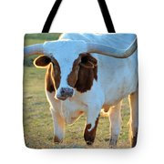 Don't Mess With Me Tote Bag by Jan Amiss Photography