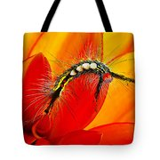 Don't Touch Tote Bag by Bill Caldwell -        ABeautifulSky Photography