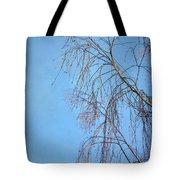 Dream Blue Tote Bag by Evelina Kremsdorf