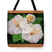 Dreamy Blooms - White Hibiscus Tote Bag by Ben and Raisa Gertsberg