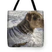 Dressed For The Snow Tote Bag by Jason Politte