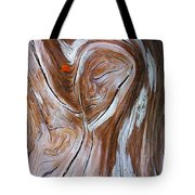 Driftwood 6 Tote Bag by Bill Caldwell -        ABeautifulSky Photography
