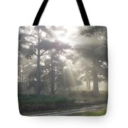 Driveway to Paradise  Tote Bag by Mike McGlothlen