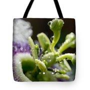 Drop Of Passion Tote Bag by Priya Ghose
