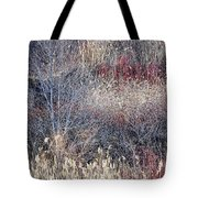 Dry Grasses And Bare Trees Tote Bag by Elena Elisseeva