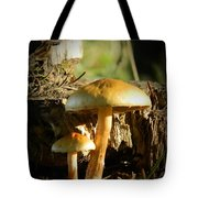 Duo Tote Bag by Chalet Roome-Rigdon