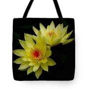 Duo Tote Bag by Rebecca Cozart