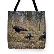 Eastern Wild Turkeys Tote Bag by Linda Freshwaters Arndt