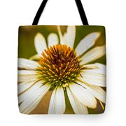 Echinacea Fading Beauty Tote Bag by Omaste Witkowski