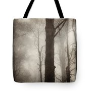 Edge of Eternity Tote Bag by Amy Weiss