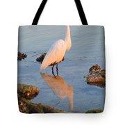 Egret - Dunedin Florida Tote Bag by Bill Cannon